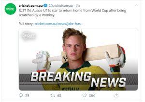 हैंडसम क्रिकेटर बना बंदर का शिकार, वर्ल्ड कप से बाहर, करियर दांव पर लगा