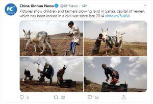 गधे जोत रहे खेत और बच्चे कर रहे खेती, इस देश में हर घंटे गिरते हैं विस्फोटक बम