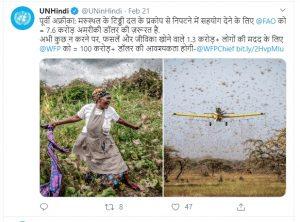 72 घंटे में 3 देशों की फसल खा गए टिड्डे, एक करोड़ किसान बुरी तरह तबाह