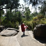 भारत आने वाले विदेशी पर्यटक क्यों जाना चाहते हैं इस गांव में