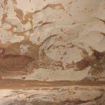 साइंटिस्ट ने खोज निकालीं दुनिया की सबसे पुरानी केव पेंटिंग्स, कलाकृति को समझने में जुटे विशेषज्ञ