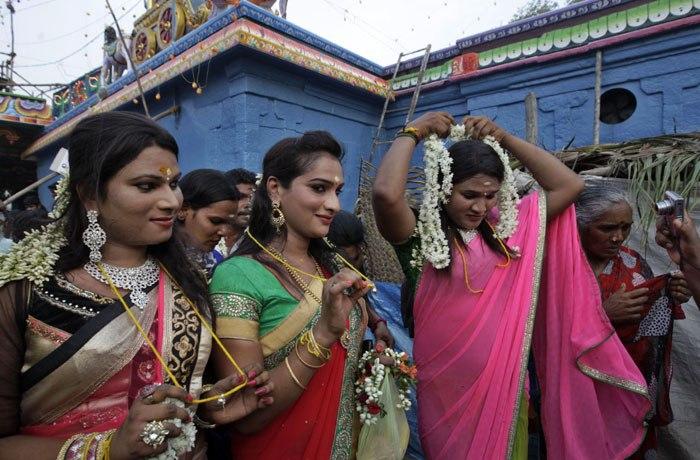 marriage festivals of transgender