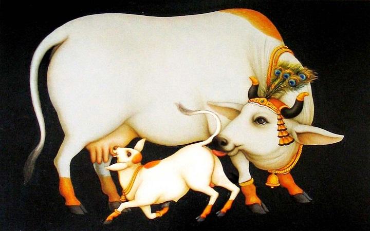 cow (1)2