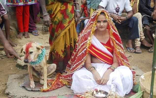 girl marries stray dog