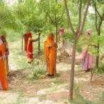 भारत के इस गांव की कहानी पढ़ाई जाती है विदेश के स्कूलों में, ये हैं खास बातें