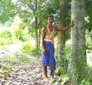 jungleman 7