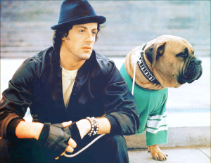 'मार्वल स्टूडियो' फिल्म का एक्टर जिसने कभी 1700 रुपए में बेच दिया था अपना कुत्ता, स्टार बनने पर उसे 23 लाख में खरीदा